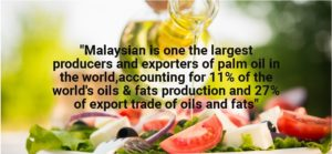 biggest exporter and producer of palm oil